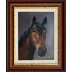 Mariann Galambos: Horse Portrait - 40x30cm