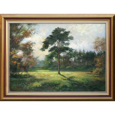 Zoltán Rajczi: Lonely tree - 50x70cm