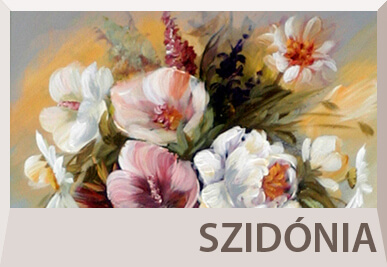 Szidonia Varga still life paintings