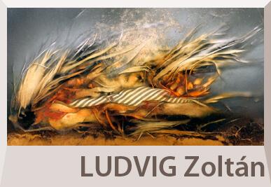 Ludvig Zoltán absztrakt festmények