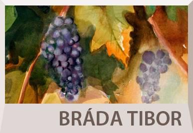 Bráda Tibor festőművész életrajza